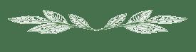 arabesque-feuilles-de-the-